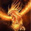 phoenix6913