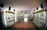 Musée départemental de Préhistoire Corse