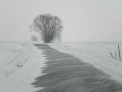 Photo paysage et monuments, Lurcy - hiver 2010 sur la route et le vent
