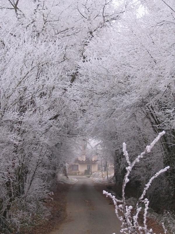Photo Lurcy - hiver 2010 lurcy sous le givre