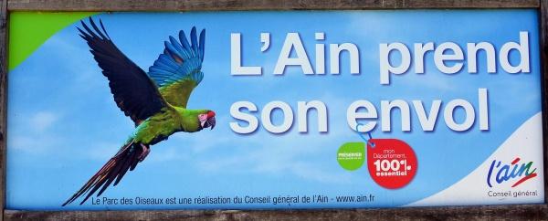 Villars les Dombes.01 .Le parc aux oiseaux.p