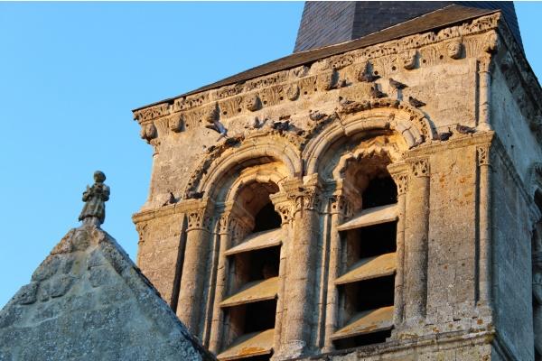 Les pigeons au soleil