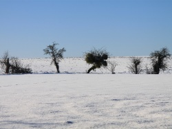 Photo paysage et monuments, Chézy-en-Orxois - Paysage d'hiver ( Chemin des Fournisseurs)