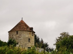 Photo paysage et monuments, Royaucourt-et-Chailvet - Pigeonnier
