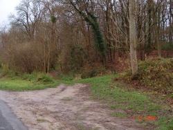 Photo paysage et monuments, Veuilly-la-Poterie - Entrée du bois de Feuillet