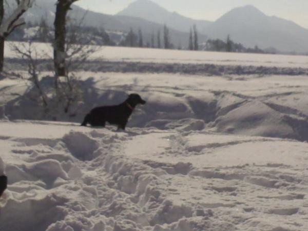 Photo Clumanc - hiver 2010