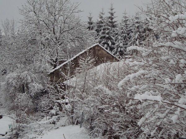 les sapins  chambre d'hote  sous la neige