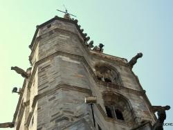 Photo paysage et monuments, Limoux - limoux l'église saint-martin