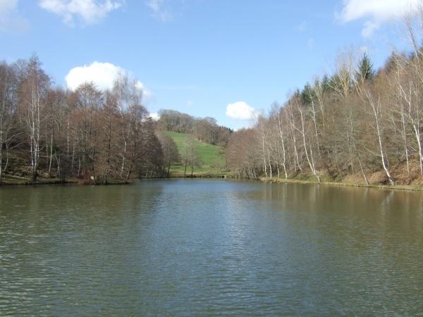 Photo Baraqueville - Plan d'eau à Carcenac sur la commune de Baraqueville