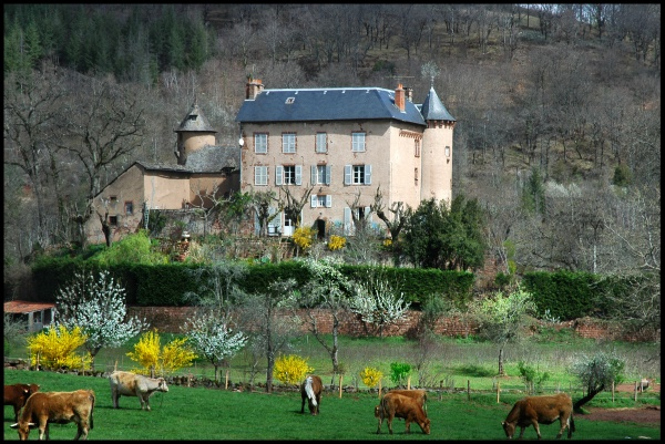Photo Conques - paysage