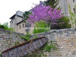 Photo de Entraygues-sur-Truyère