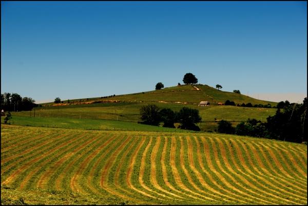 Photo Laguiole - paysage