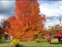 Photo paysage et monuments, Livinhac-le-Haut - l'automne