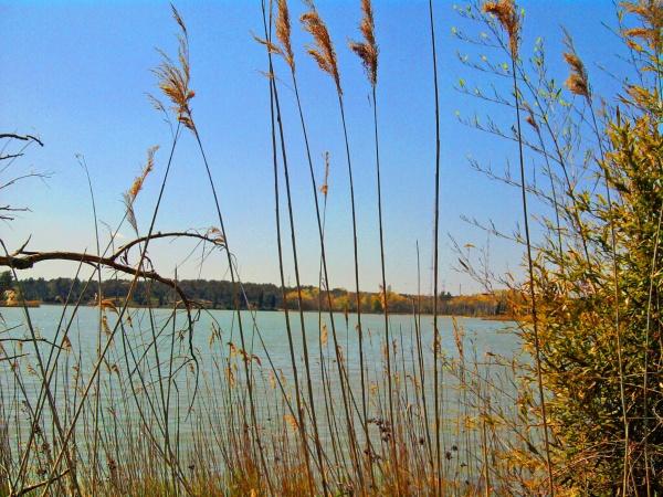 Prés d'Aix en Provence, le lac bleu (Bassin du Réaltor)
