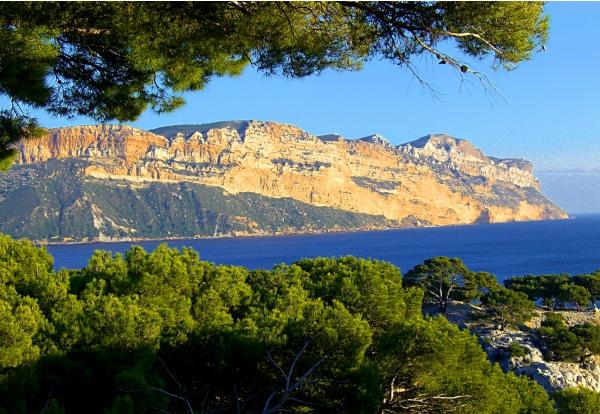 Photo Cassis - Les falaises du Cap Canaille