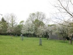 Photo paysage et monuments, Blay - la campagne