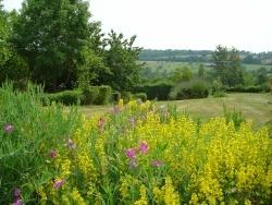 Photo paysage et monuments, Sainte-Marguerite-de-Viette - Jardin et vue sur la Vallée d'Auge, à Ste Marguerite de Viette