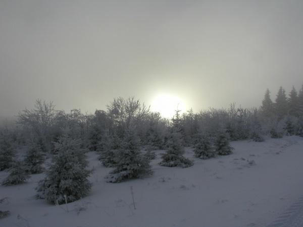 Photo Laurie - Gignol en hiver