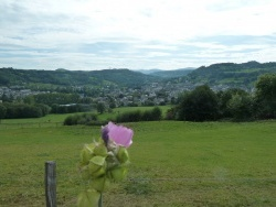 Photo paysage et monuments, Riom-ès-Montagnes - Riom ès montagnes panorama