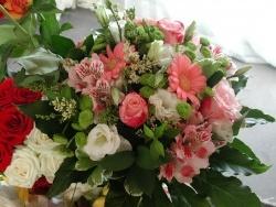 Photo faune et flore, Vieillevie - Des fleurs....Toujours des fleurs !!!