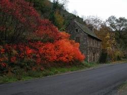 Photo faune et flore, Vieillevie - Maison du bord du Lot en automne.