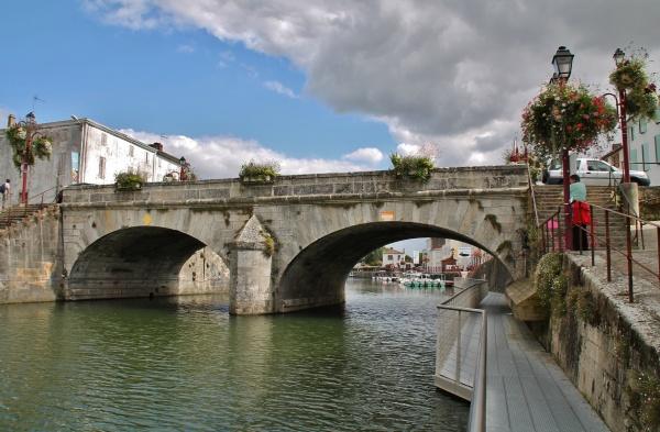 Pont sur la Sèvre Niortaise