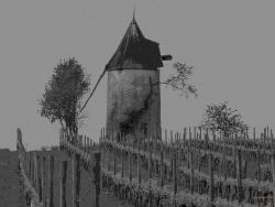 Photo paysage et monuments, Mortiers - Vignes et moulin.