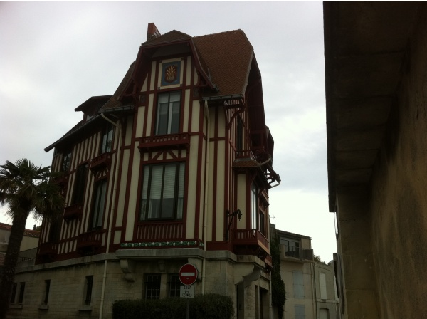 Photo La Rochelle - Chat perché