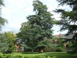 Photo paysage et monuments, La Guerche-sur-l'Aubois - Jardin de la mairie