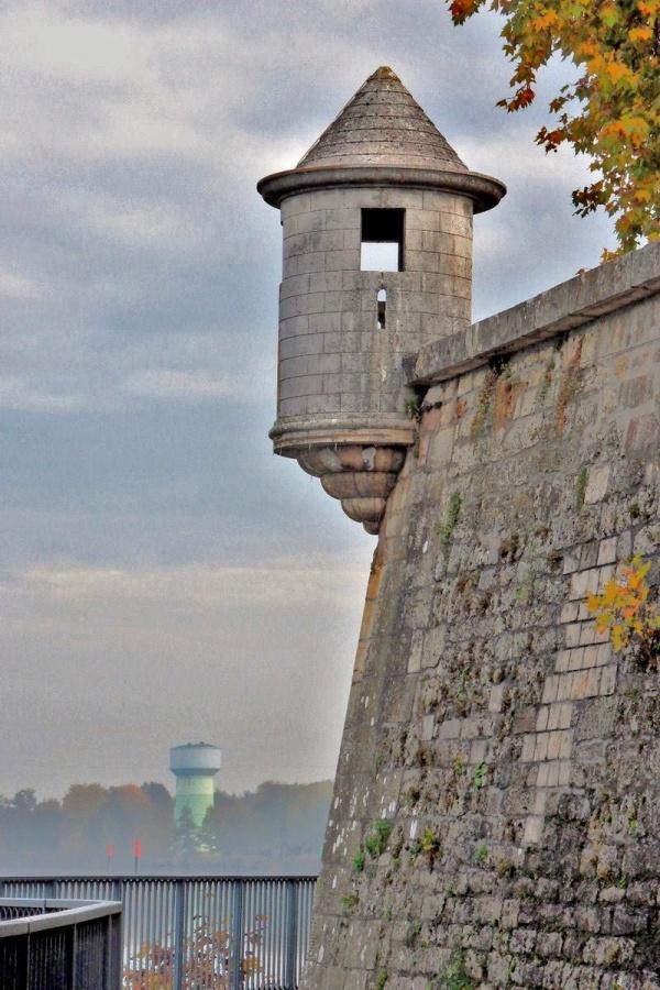 Photo Auxonne - Auxonne.21.Bord de saône.
