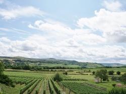 Photo paysage et monuments, Marcheseuil - la campagne