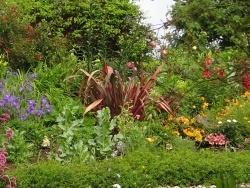 Photo faune et flore, Bourbriac - jardin Briacin 3