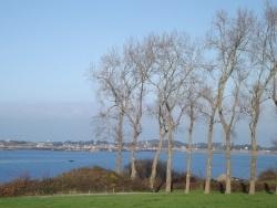 Photo paysage et monuments, Île-de-Bréhat - Bréhat - entre les arbres