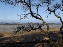 Photo paysage et monuments, Ploubazlanec - Ploubazlanec - La mer se repose