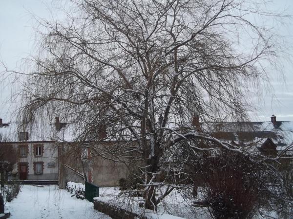 ballade dans le bourg sous la neige