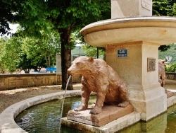 Photo paysage et monuments, La Chapelle-en-Vercors - Detail Fontaine