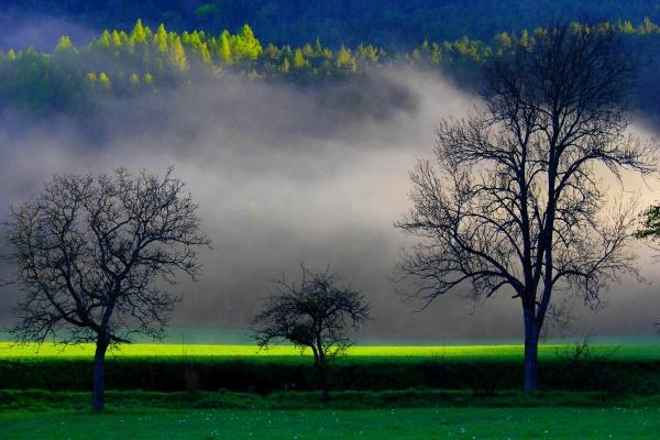 Photo Lus-la-Croix-Haute - Les plus beaux matins du monde