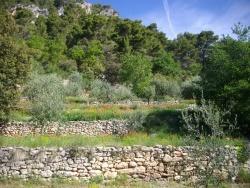 Photo paysage et monuments, Pierrelongue - Les Ayguiers, terrasses en cours de restauration