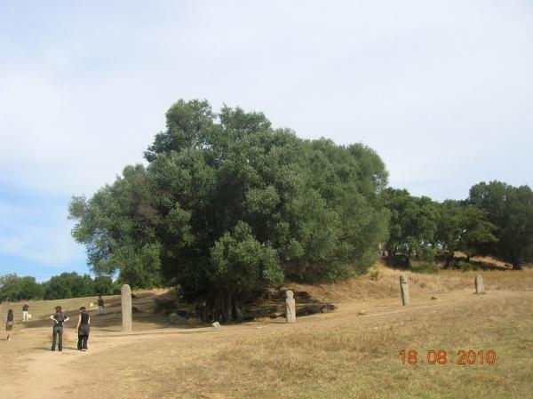 Photo Sollacaro - Le site préhistorique de Filitosa