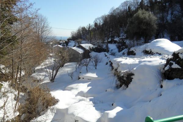 Photo Cervione - Cervione - le 14 fevrier 2012