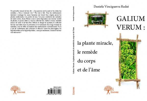 Caille-lait (lat. Galium Verum)