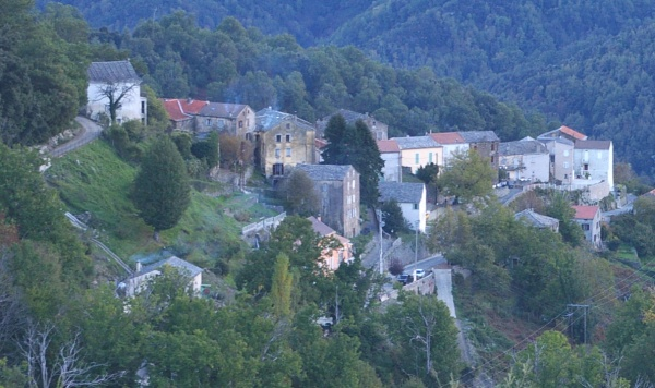 Photo Valle-d'Alesani - castagneto