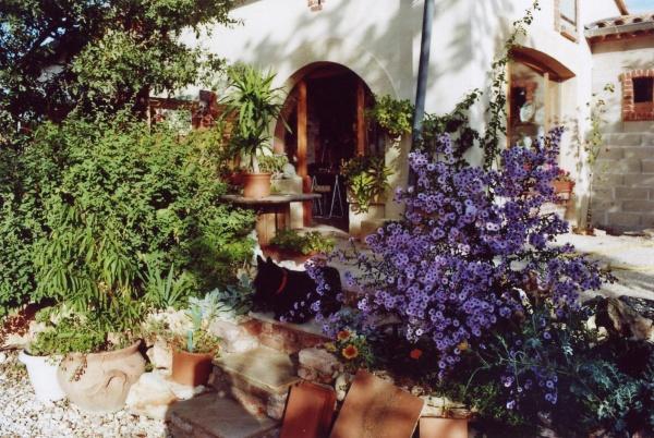 """L'entrée de """"l'atelier poterie du jardin fleuri"""", entourée de ses fleur -asters en automne."""