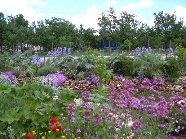 Jardin fleuri (ZAE) au printemps, avec des essences nécécitant aucun arosage!