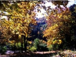 Photo paysage et monuments, Sumène - Les couleurs d'Automne à Sumène