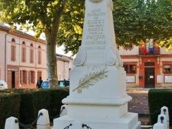Photo de Buzet-sur-Tarn