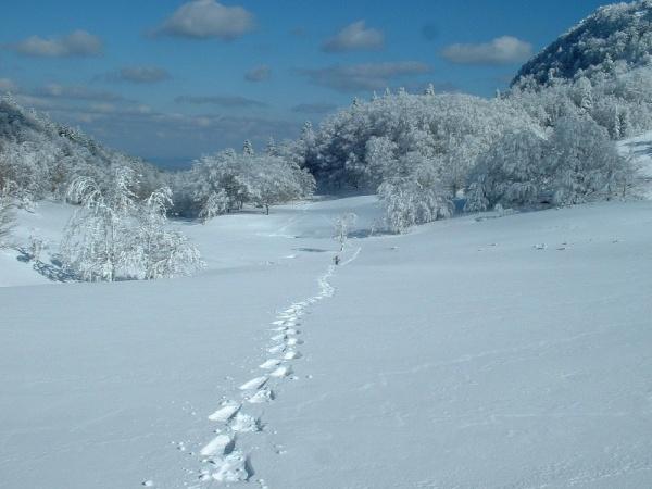 Photo Herran - Les estives en hiver lieu-dit l'hélicoptère
