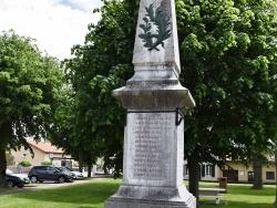 Photo de Villeneuve-de-Rivière