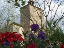 Photo faune et flore, Fourcès - FOURCES EN FLEUR