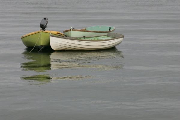Photo Lège-Cap-Ferret - Les petits bateaux du Cap Ferret ( bassin d Arcachon )